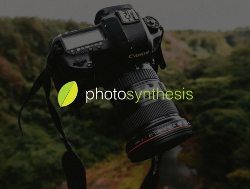 Portfolio of website designs